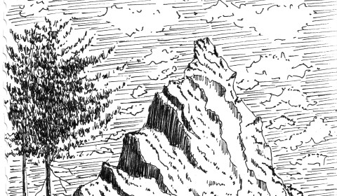 Learn to Draw Simple Landscapes in Pen and Ink - Learn To Draw Simple Landscapes In Pen And Ink North York Arts