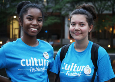 Volunteer in Culture